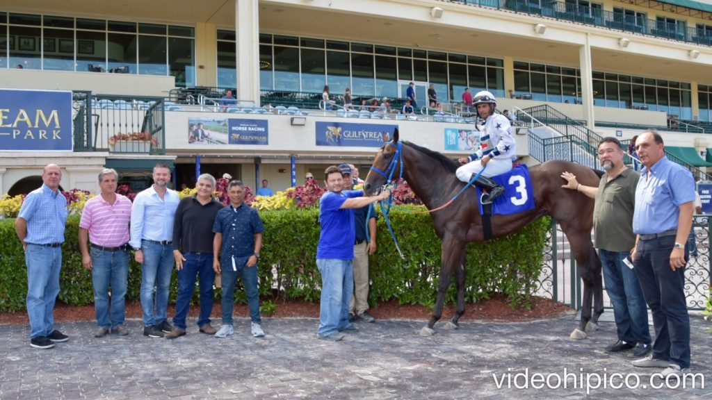 Gulfstreampark 6th Race 6ta Carrera 2017 8 17